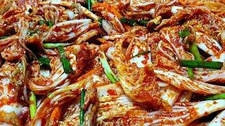 알배추 김치 / 알배추 겉절이 아삭하고 시원한 여름김치