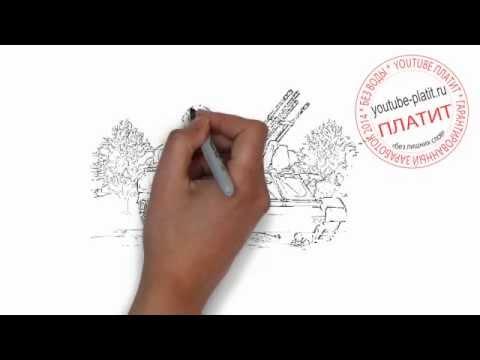 Как научиться рисовать самолет поэтапно