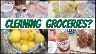 💦How To DISINFECT + REPACKAGE GROCERIES ♻ (Free + Cheap!) Wipe Down Produce, Bags, Boxes, Meat etc.