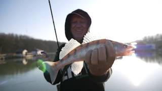 ЛОВИМ ХИЩНИКА НА СПИННИНГ СУДАК ОКУНЬ ЩУКА Зимняя рыбалка
