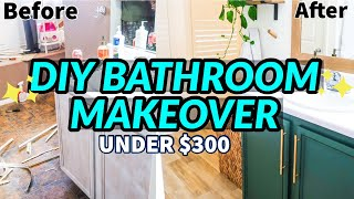 DIY BATHROOM MAKEOVER ON A BUDGET | BATHROOM REMODEL UNDER $300 | EXTREME BATHROOM TRANSFORMATION