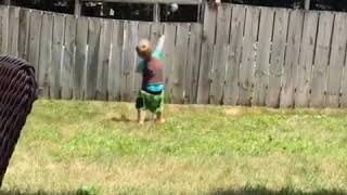 Toddler plays with neighbor's dog over the fence