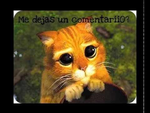 Eddy Herrera – Dormir Juntitos + Eddy Herrera – Ajena+ MIGUEL moly -mamita mia