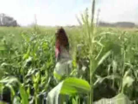 Download Selena Gomez & The Scene - Hit The Lights TEASER 2