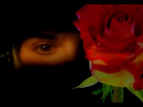 Enya - China Roses (Music Video)