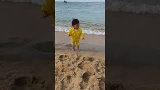 안목해변에서 꼼짝 못하는 아디다스 아기
