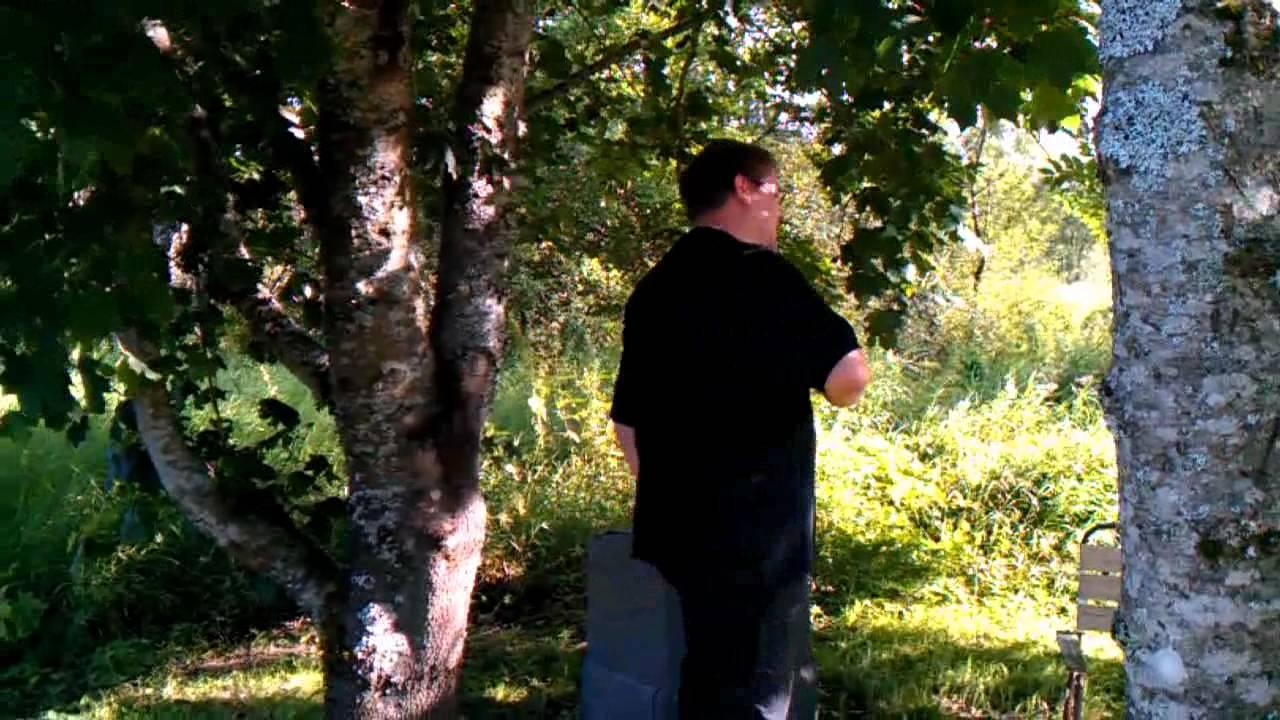 Arne Qvick* Arne Rosen Qvick·& Sven Tomtélius - Helgdagskväll I Timmerkojan