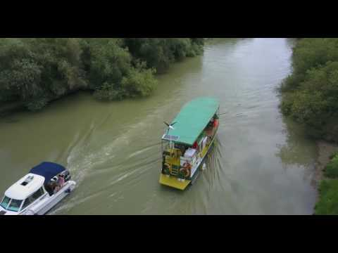 zbor in delta dunarii - filmare 4k