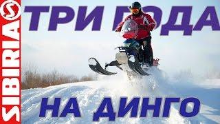 ТРИ года на ДИНГО Отзыв советы  Снегоход ирбис динго т150