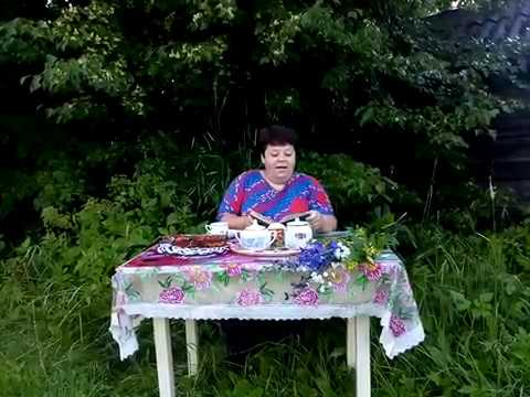 Изображение предпросмотра прочтения – МаргаритаМурзенкова читает произведение «Деревня» А.А.Фета