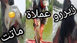 فديو سحب شباك الصيد بأسماء متابعين القناة الكرام