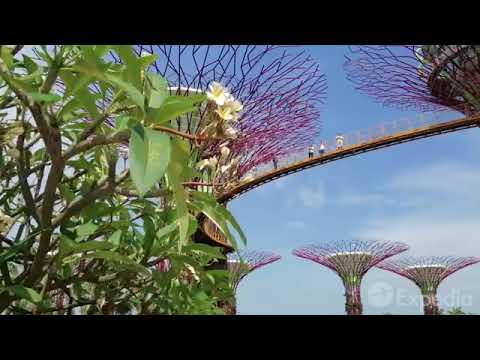 Singapur city F.K.tv📺