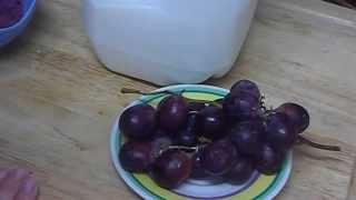 """How to Make Natural Moisturizing Homemade Grape & Milk Face Toner for Skin Care"" ""Beauty Tips"" Thumbnail"