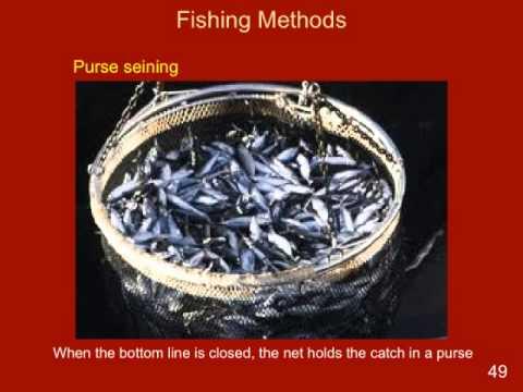 Fishing Methods Eng