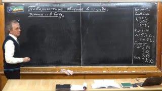 Урок 204. Поверхностные явления в природе, технике и в быту