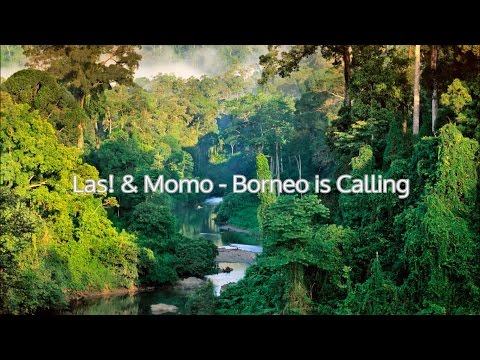 Las! & Momo - Borneo is calling (Lirik video)