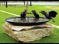 40 Bird Bath Garden Design Ideas