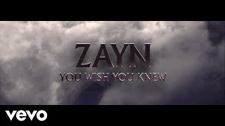 ZAYN You Wish You Knew (Audio)