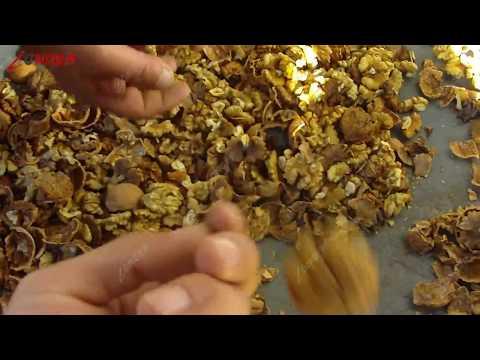 Black Walnut Cracking Shelling Hulling Machine Price For Sale