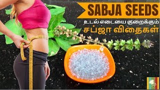 Sabja Seeds For Weight Loss | Sweet Basil Seeds For Weight Loss | சப்ஜா விதை பயன்கள்