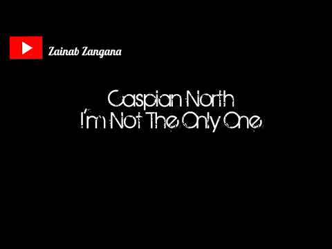Sam Smith - I'm Not The Only One (Cover By Caspian North) - مترجمة