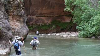 Zion Narrows Hike, Zion National Park