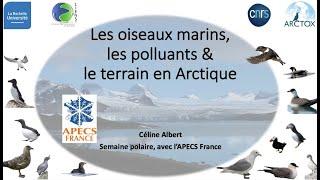 SP2020Aut - #4.2. - Celine Albert - Les oiseaux Marins, les polluants & le terrain en Arctique