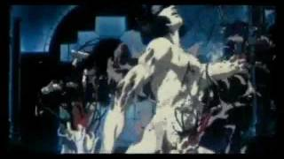 MOONCAT - War ina Babylon