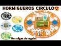 Video: AntHouse-Groß3-Kreis 20x20x1 (Mit Deckel)