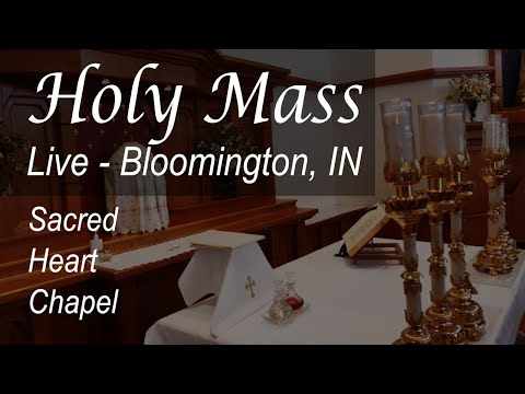 Live Mass & Rosary - 7 AM - Wednesday - Bloomington - July 1