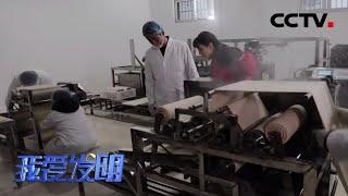 《我爱发明》 20200331 巧取豆皮|CCTV农业