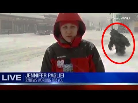 16 Mysterious Creatures Caught on  TV