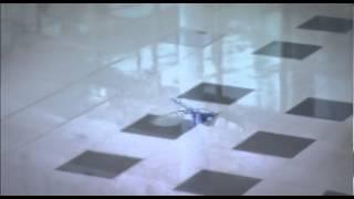 Chuồn chuồn robot 'nuột' như thật - VnExpress