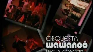 Salsaband Wawanco, Live Europäische Wochen Passau - München, Praterinsel