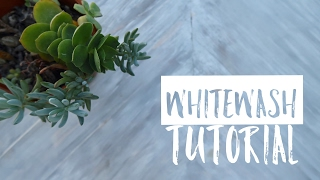 HOW TO GET THE PERFECT WHITEWASH LOOK