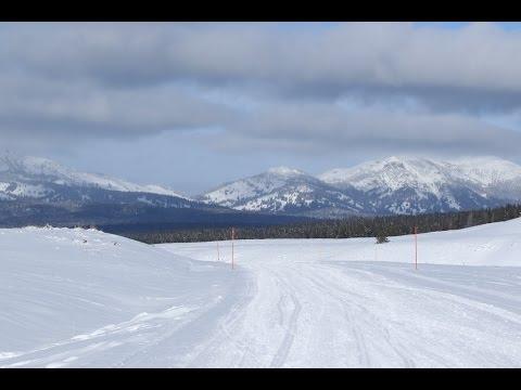 Yellowstone Winter Wonderland Snow Mobile