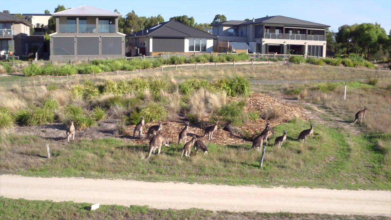 Public Golf Access - Settlers Run Golf & Country Club - Come Play Today!Settlers Run Golf & Country Club