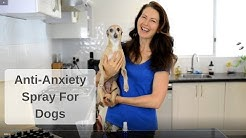 Anti-Anxiety Spray for Dogs using Essential Oils