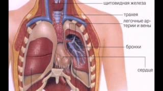 видео Аксиальная грыжа пищеводного отверстия диафрагмы: симптомы