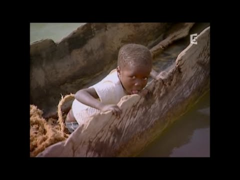 Lake Chad - Not only fish - It is a whole life