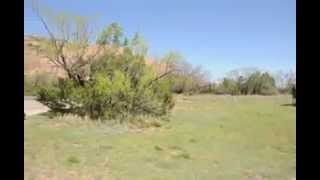 Marco vs Road Runner, Palo Duro Canyon, Amarillo, Texas.