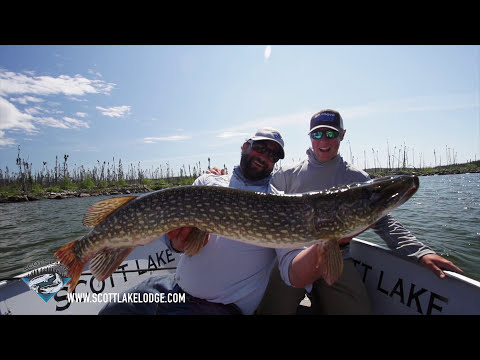 DRONE FLY FISHING NORTHERN PIKE LIVE STRIKE