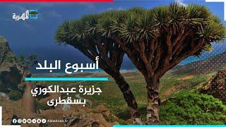 جزيرة عبد الكوري غرب سقطرى.. كما تركها آدم عليه السلام | أسبوع البلد