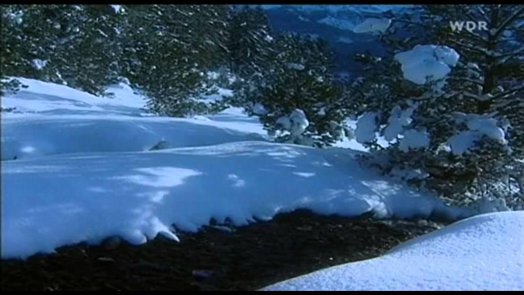 White Christmas Youtube.Andre Rieu White Christmas Instrumental Music