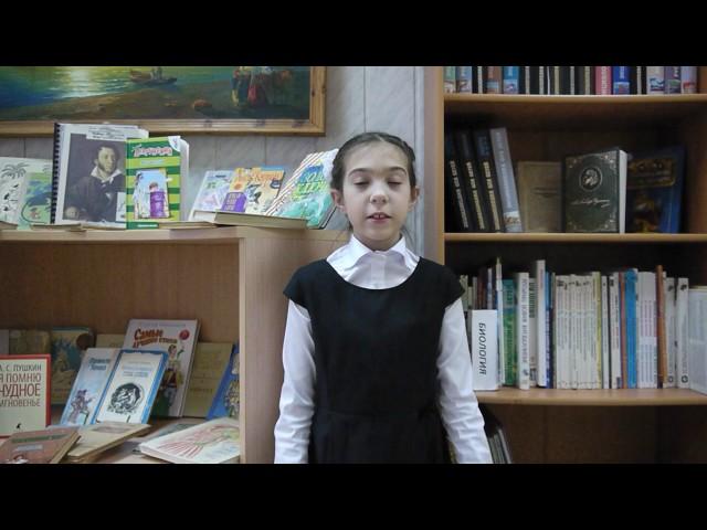 Изображение предпросмотра прочтения – ТаисияКучеренко читает произведение «Ветхая избушка» А.А.Блока