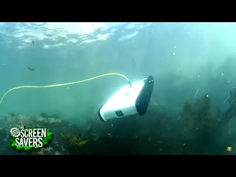 Open-Source Underwater Robot