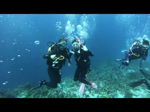 Kelly Krause '21 - Marine Science Research: Cuba