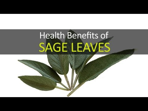 10 Health Benefits Of Sage Leaves