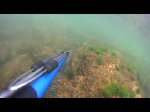 Buceando en Punta Colorada
