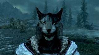 Funny Moments And Glitches In Skyrim Part 2 (Inigo + More Kharjo)